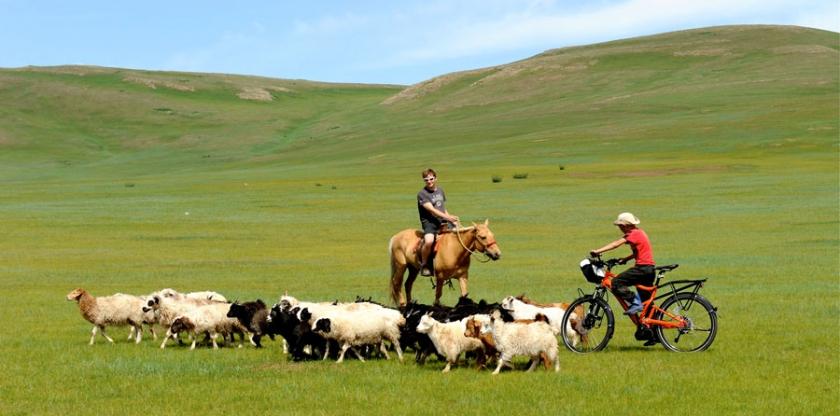pedelec-adventures-com_tour-de-mongolia_2012-07-05_tag1_pferd-gegen-pedelec_web